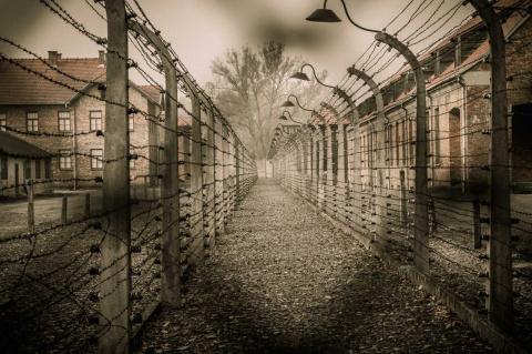 Лагерная психология: переработка человека на фабриках смерти