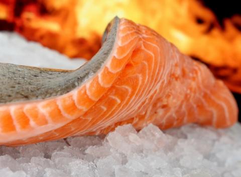 Эту рыбу любят многие, но не все знают, что это самая токсичная еда в мире