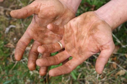Отмываем руки