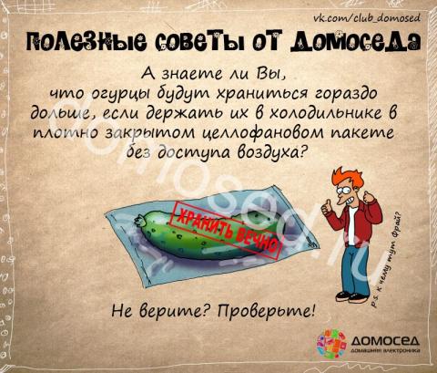 Полезные советы от Домоседа в картинках