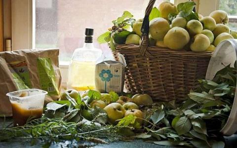 Рецепты моченых яблок