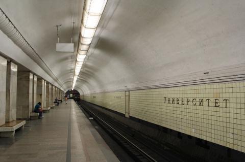 Машинист поезда метро спас котенка на рельсах станции «Университет»
