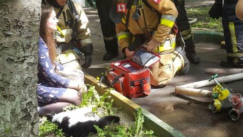 Сотрудники МЧС спасли котов …