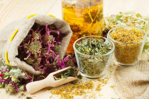 Лекарственные травы при ревм…