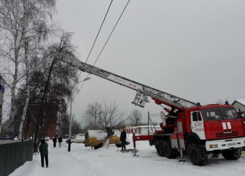 Пожарные Котовска снимали кота с дерева с помощью 30-метровой лестницы
