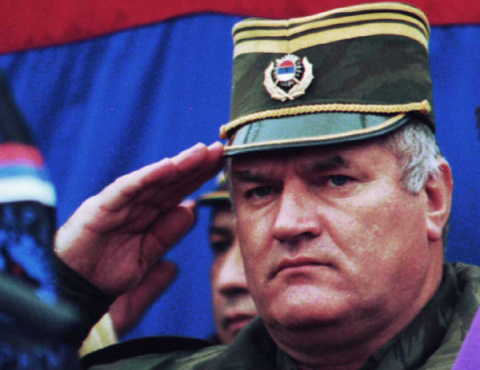 Россия готова принять сербск…