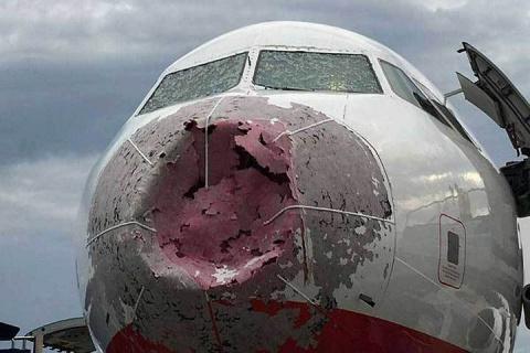 Украинские националисты травят летчика-героя, спасшего 121 пассажира, за любовь к Лаврову и ДНР