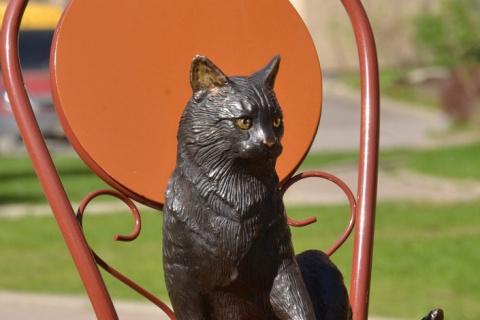Памятник кошке блокадного Ле…