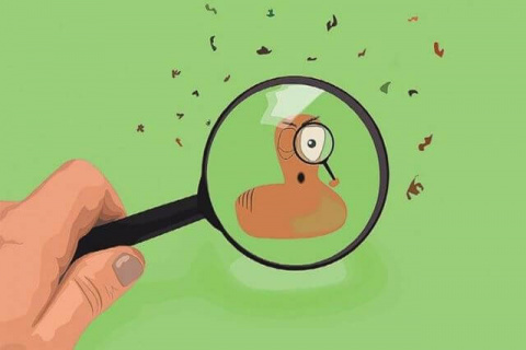 4 основных вида заражения паразитами