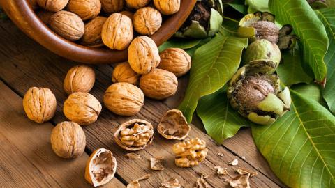 Грецкий орех − волшебный рецепт от головных болей!