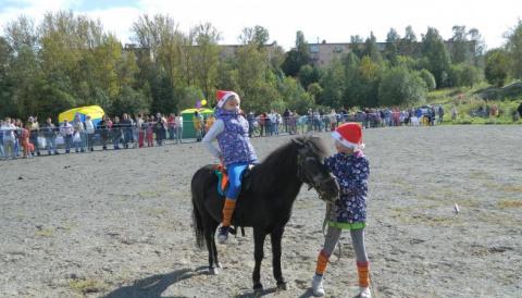 И пони тоже кони. В Петрозаводске ярким праздником отметили приближающийся День лошади