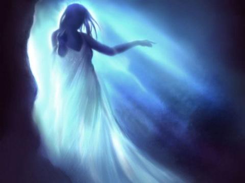 Ночная жена