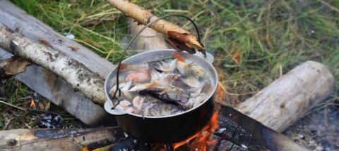 Семь гектаров леса сгорело в Карелии после отдыха рыбаков