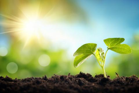 Масштабы присутствия фармо- и химической промышленности в окружающей среде