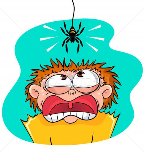 Про тарантулов в банке