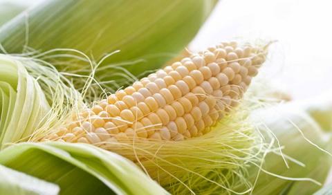 Кукурузные рыльца для похудения. Простой рецепт