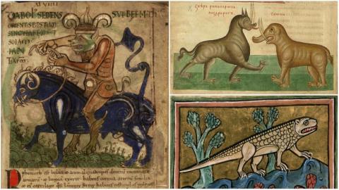 Как в средневековой Европе и…