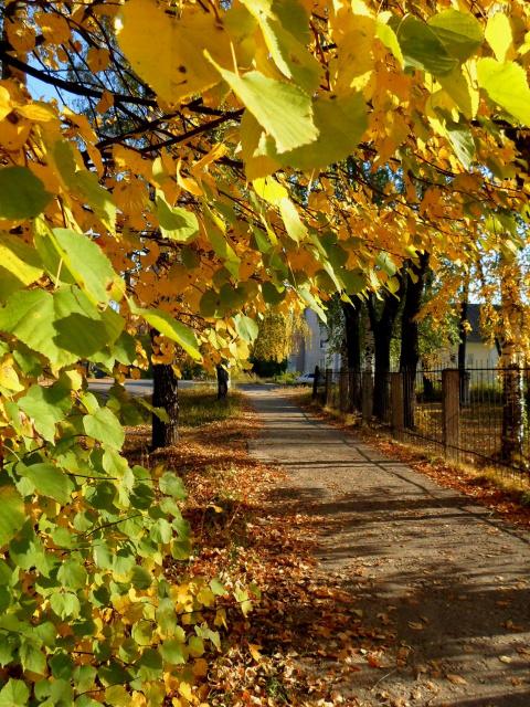 Осенние миражи