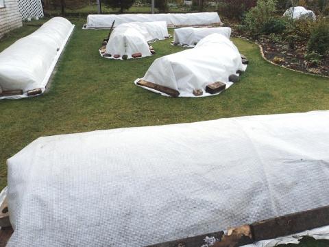 Чем укрыть сад от морозов?