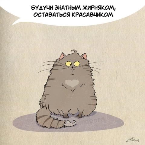 УМЕНИЯ КОТЕЕК (котоматрица)