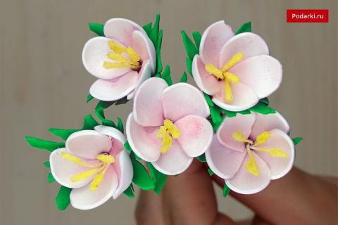 Маленькие цветы изфоамирана
