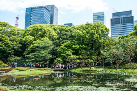 Токио за 2,5 дня