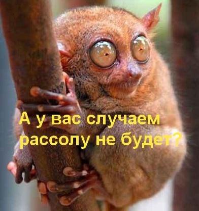 http://mtdata.ru/u5/photoDD87/20010831934-0/big.jpeg
