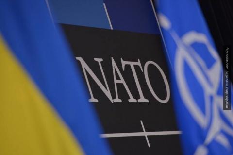 НАТО отклонил вопрос о вступ…