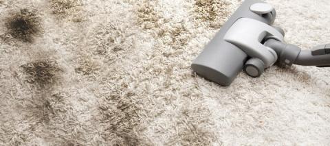 Как почистить ковролин в дом…
