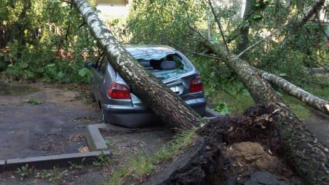 Автомобили, пострадавшие от …