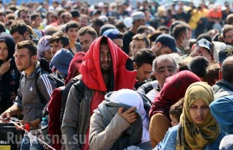 Высланных из ЕС беженцев при…