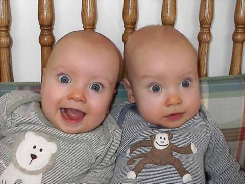 А у вас есть близнецы?