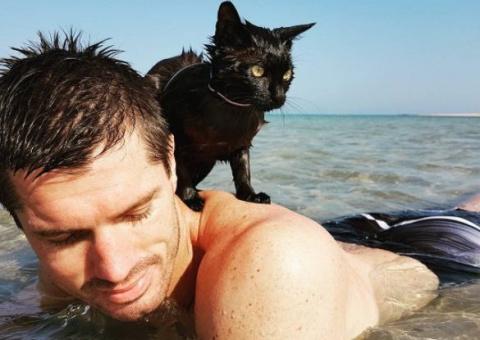 Кошка, спасенная семейной па…