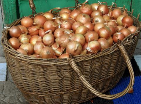 3 секрета выращивания идеального лука