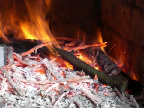 «Бьётся в тесной печурке огонь…»