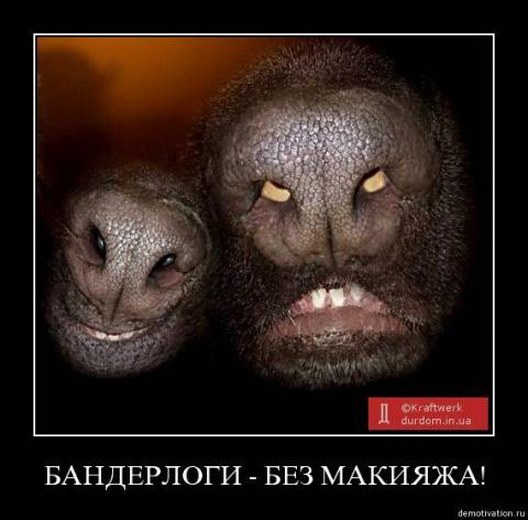 Мы их убиваем, а они думают что это Путин! Спасибо укроСМИ!