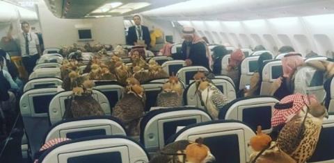 Саудовский принц арендовал 8…
