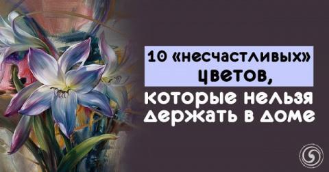 10 «несчастливых» цветов, ко…