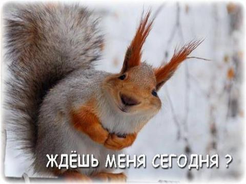 Как Михалыч пить бросил