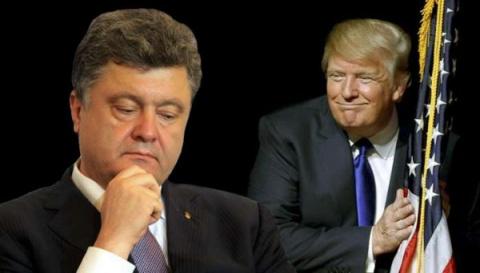 Трамп станет палачом режима …