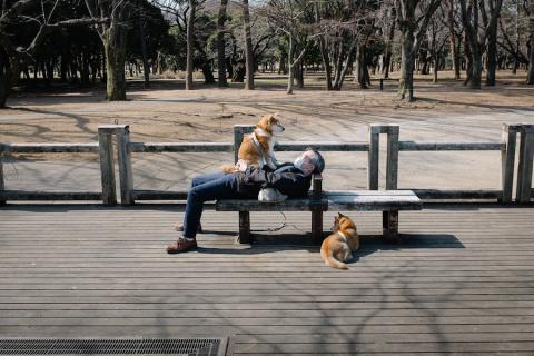 Сто лет одиночества в Токио:…