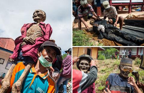 Индонезийцы выкапывают и пер…