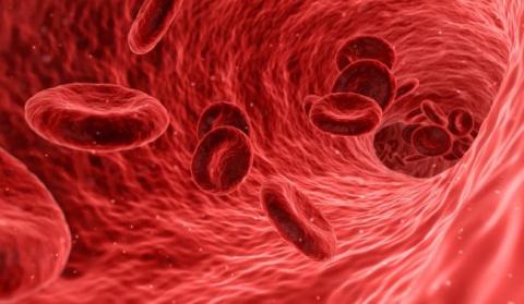 В Китае научились добывать электричество при помощи тока крови