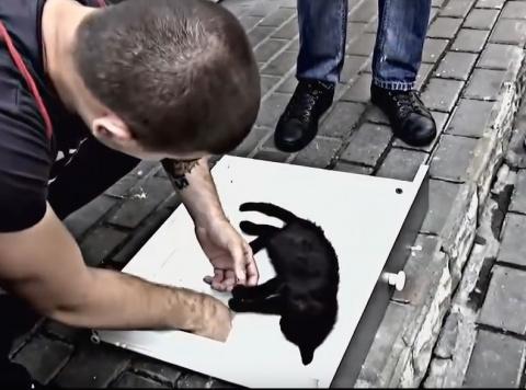 Этот покалеченный котенок до…