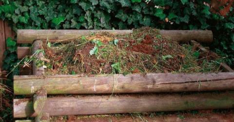 Как правильно сформировать компостную кучу