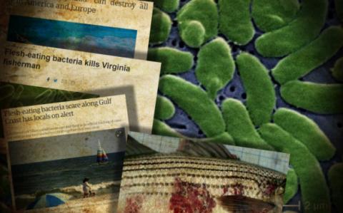 Смертельные опыты: созданная учеными США «химера» убивает американцев