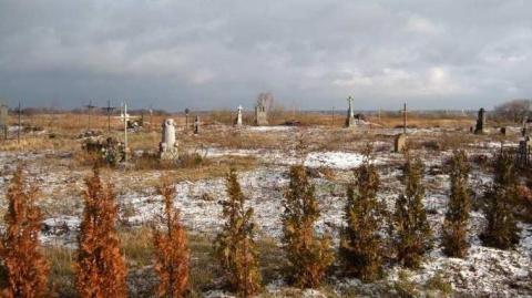 По кладбищу Луцка бродит бел…