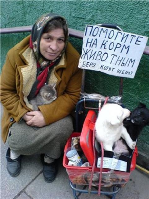 Конвейер смерти. Жуткая правда о бездушном бизнесе тётушек с котятами
