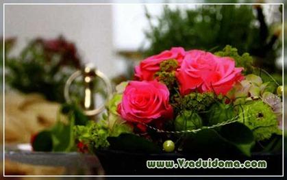 Виды роз (фото) —  посадка и…