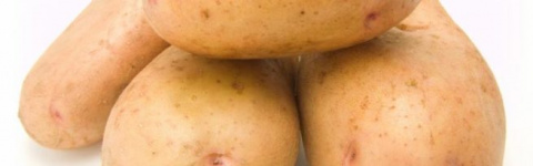 Всё о картофеле Американка —…